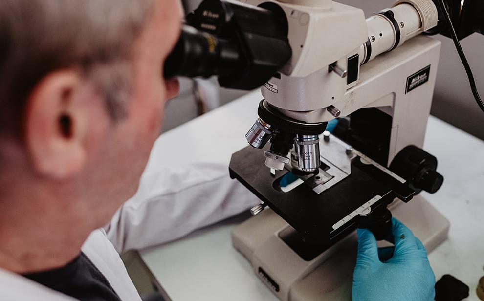 i+d+i desguisa microescopio investigacion